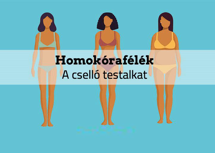 Homokórafélék – A cselló testalkat